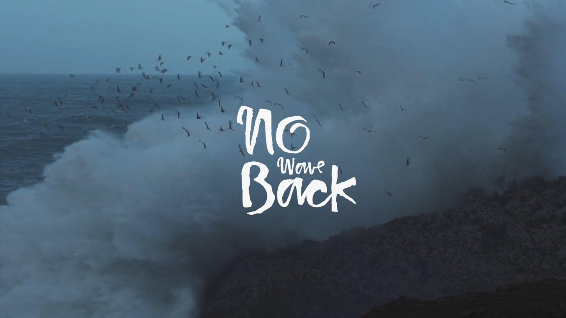 No wave back - Documentary_Trailer /director/
