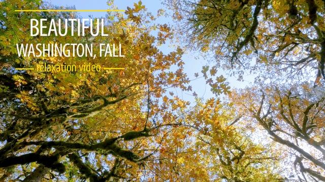 Beautiful Washington. Fall