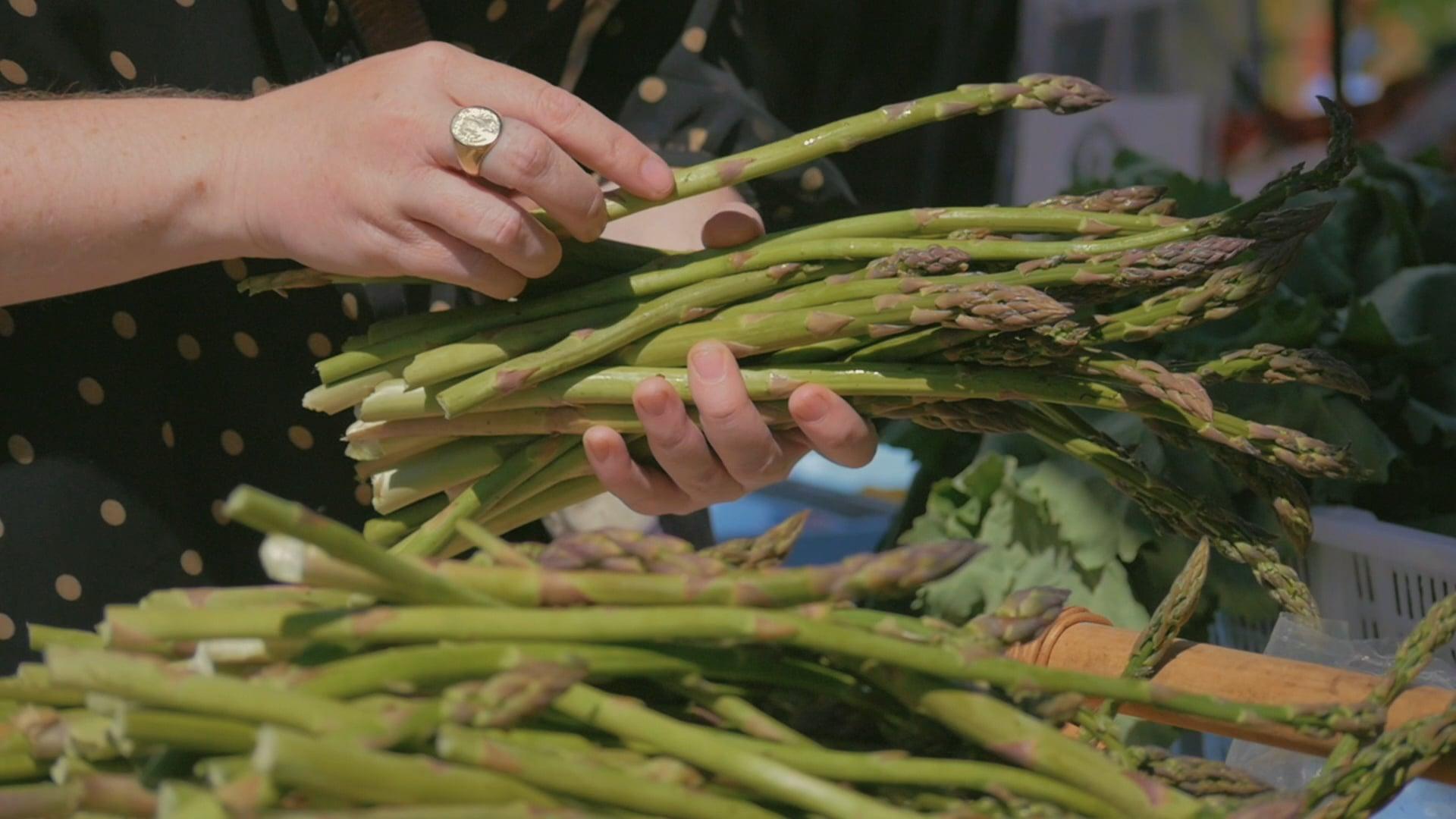 Asparagus Magazine