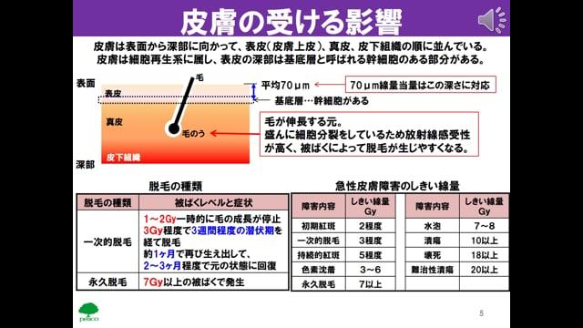 生物04_臓器・組織レベルでの影響