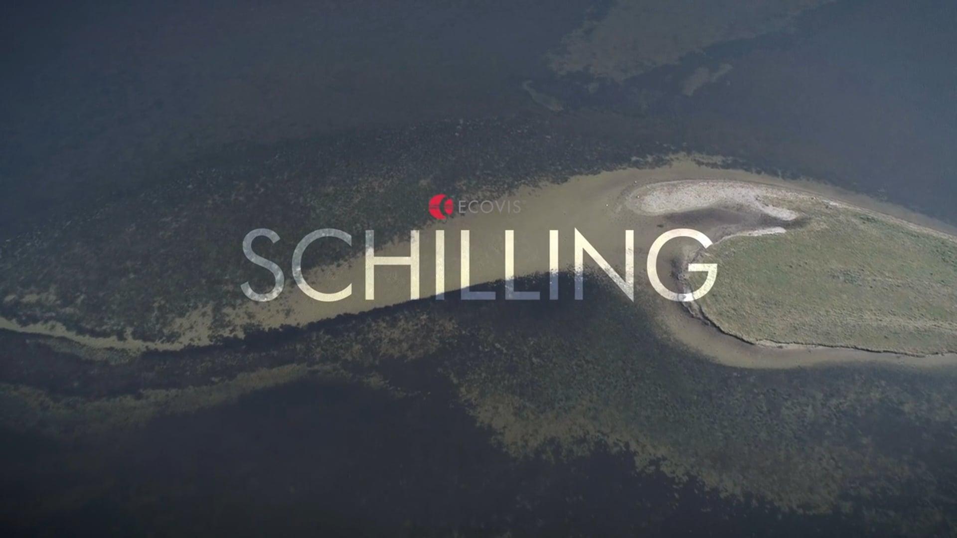Ecovis - Schilling