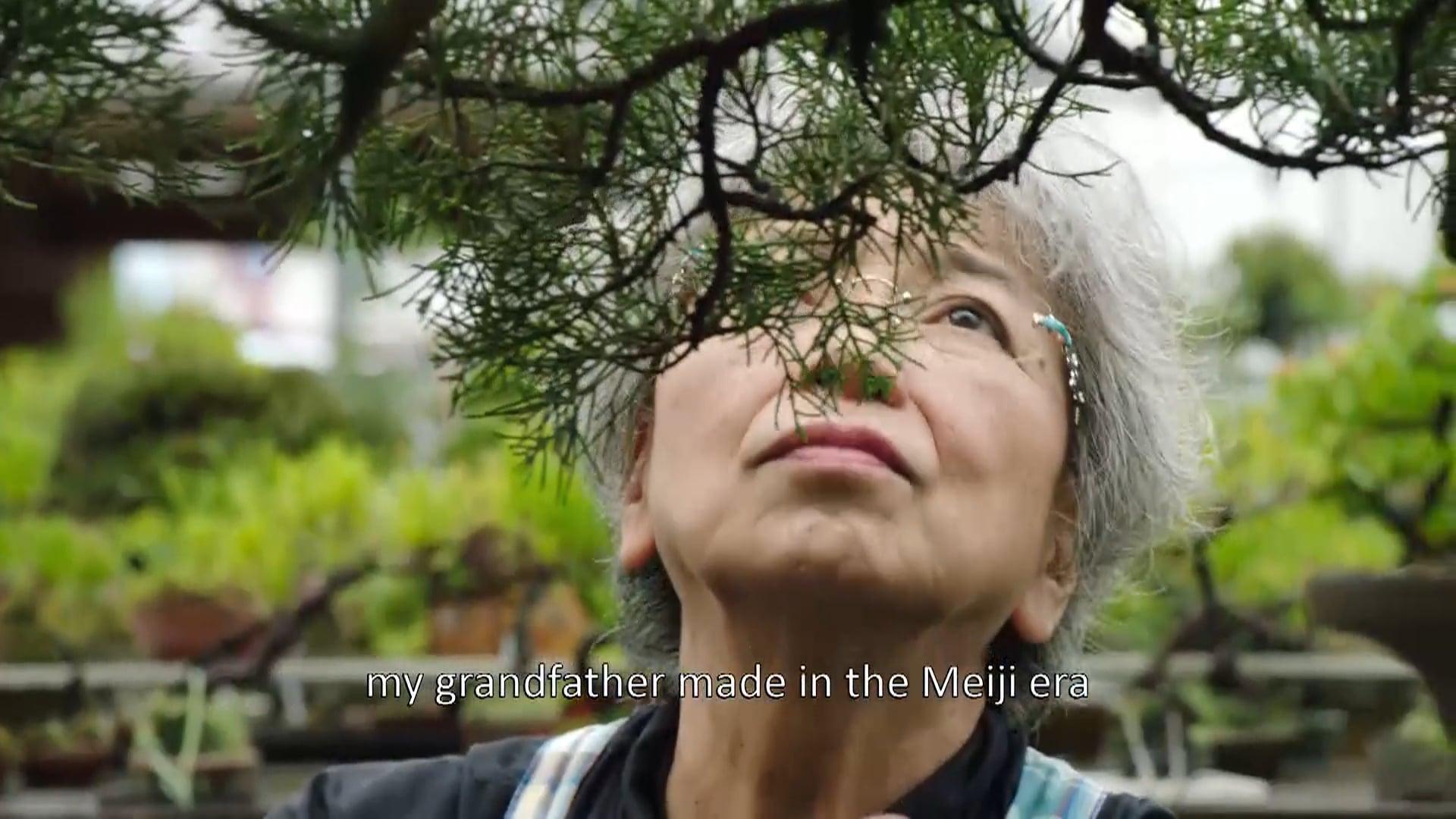 BBC Extraordinary Rituals - Bonsai
