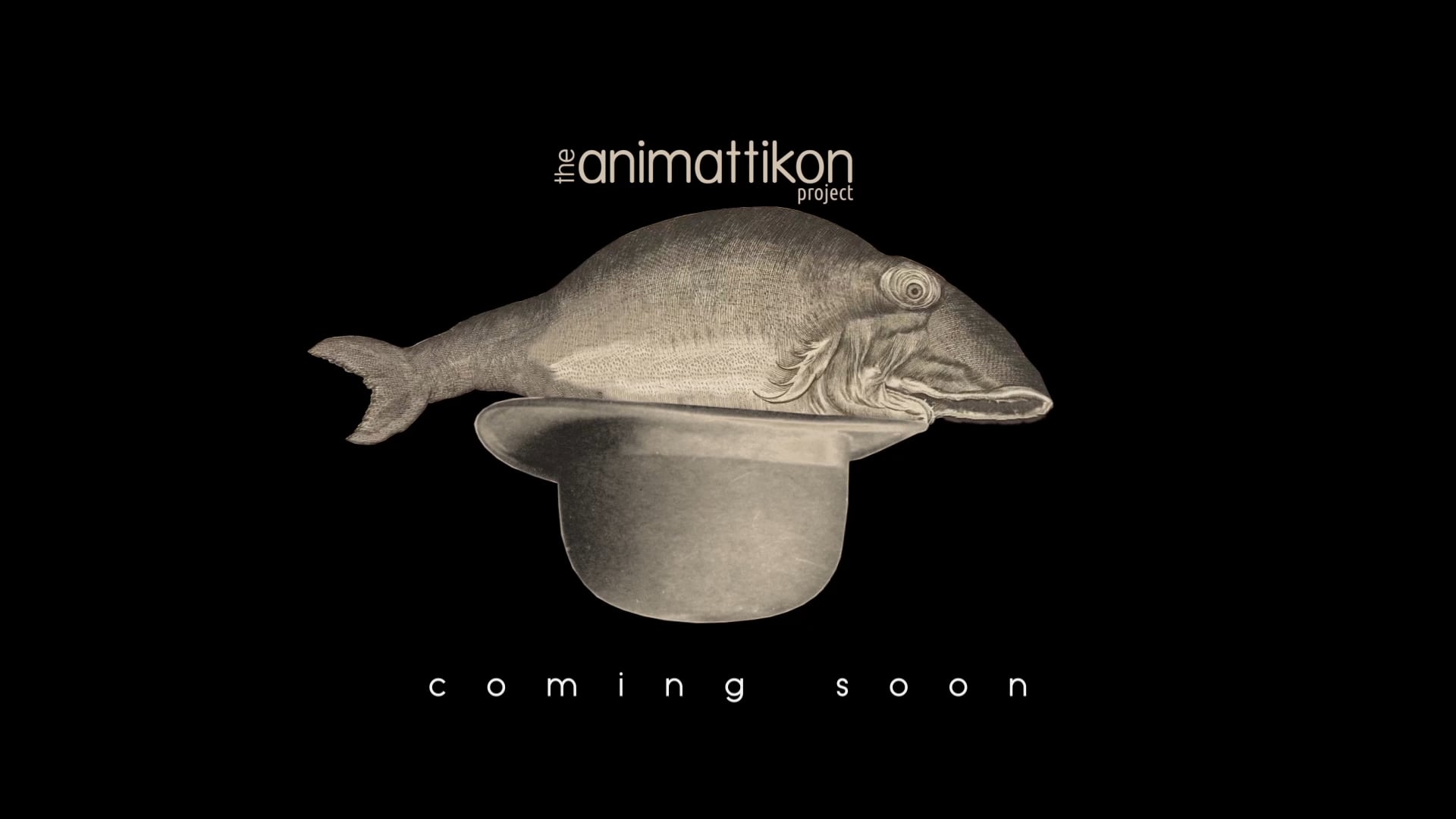 The Animattikon Project / Coming Soon