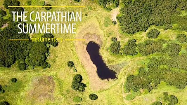 The Carpathians. Summertime