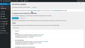 How to Update Your WordPress Site