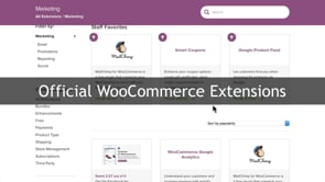More About WooCommerce Extensions