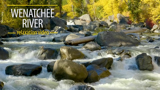 Wenatchee River from Icicle Creek Road, WA