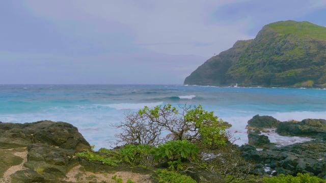 Oahu Beaches, Hawaii - Episode 4