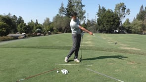 Visualizing Arm Extension - Timing & Direction