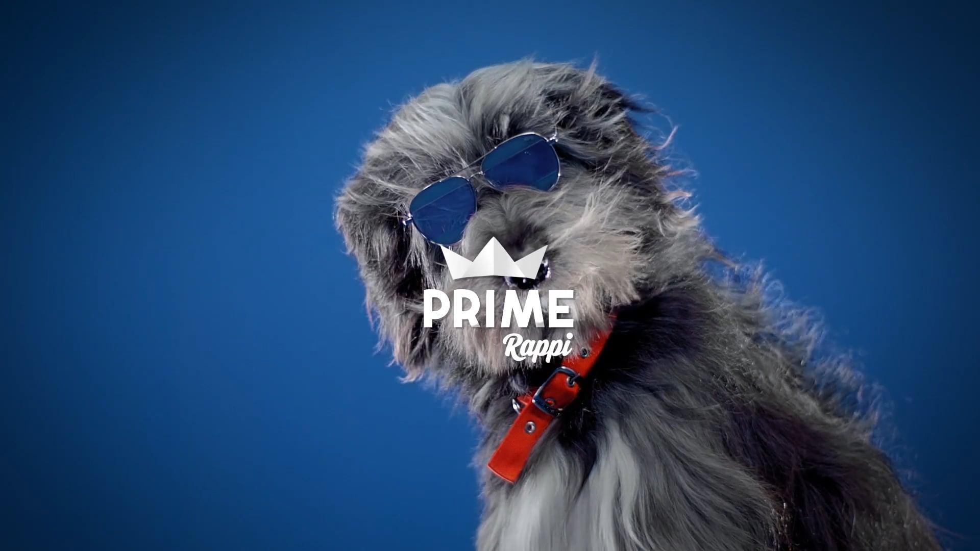 Rappi - Prime - Perro