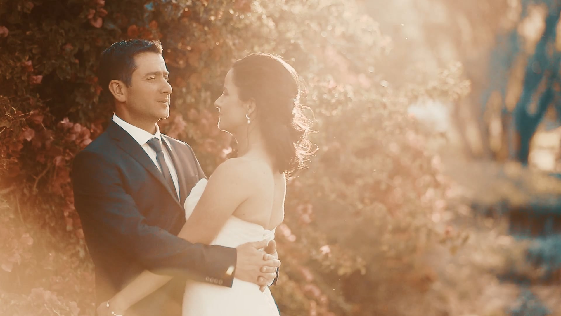Jaco and Anja wedding preview, Jason's Hill Wine Esate Rawsonville - 20 October 2018