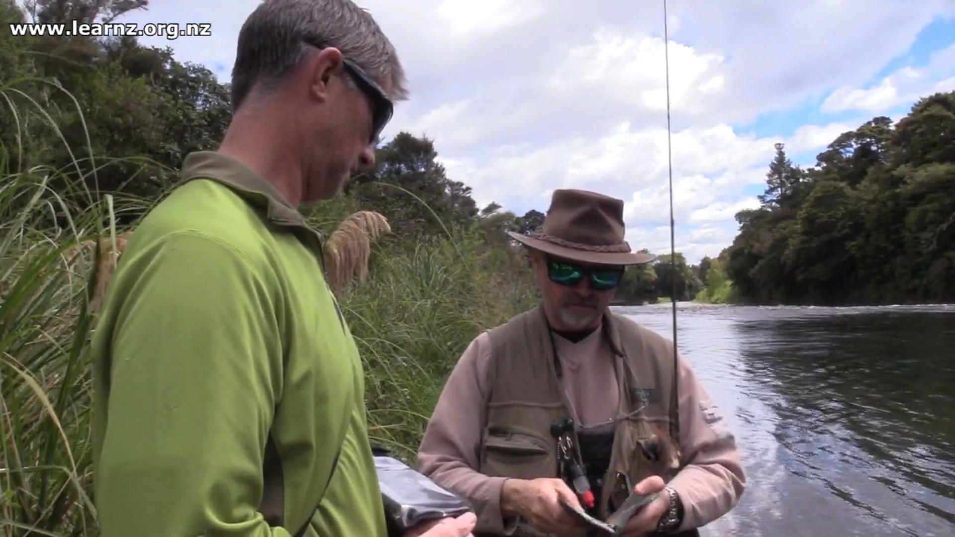 Surveying anglers