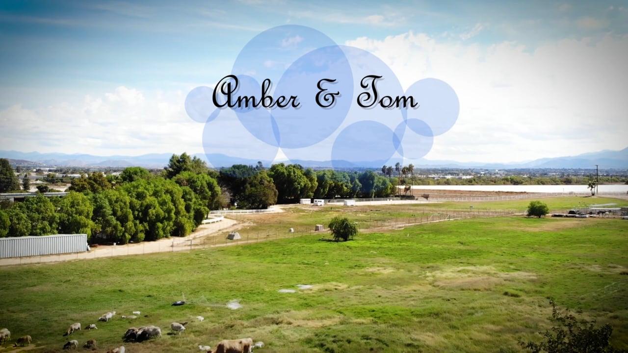 Amber + Tom ~ Hawk Ranch Wedding Video Highlight Film