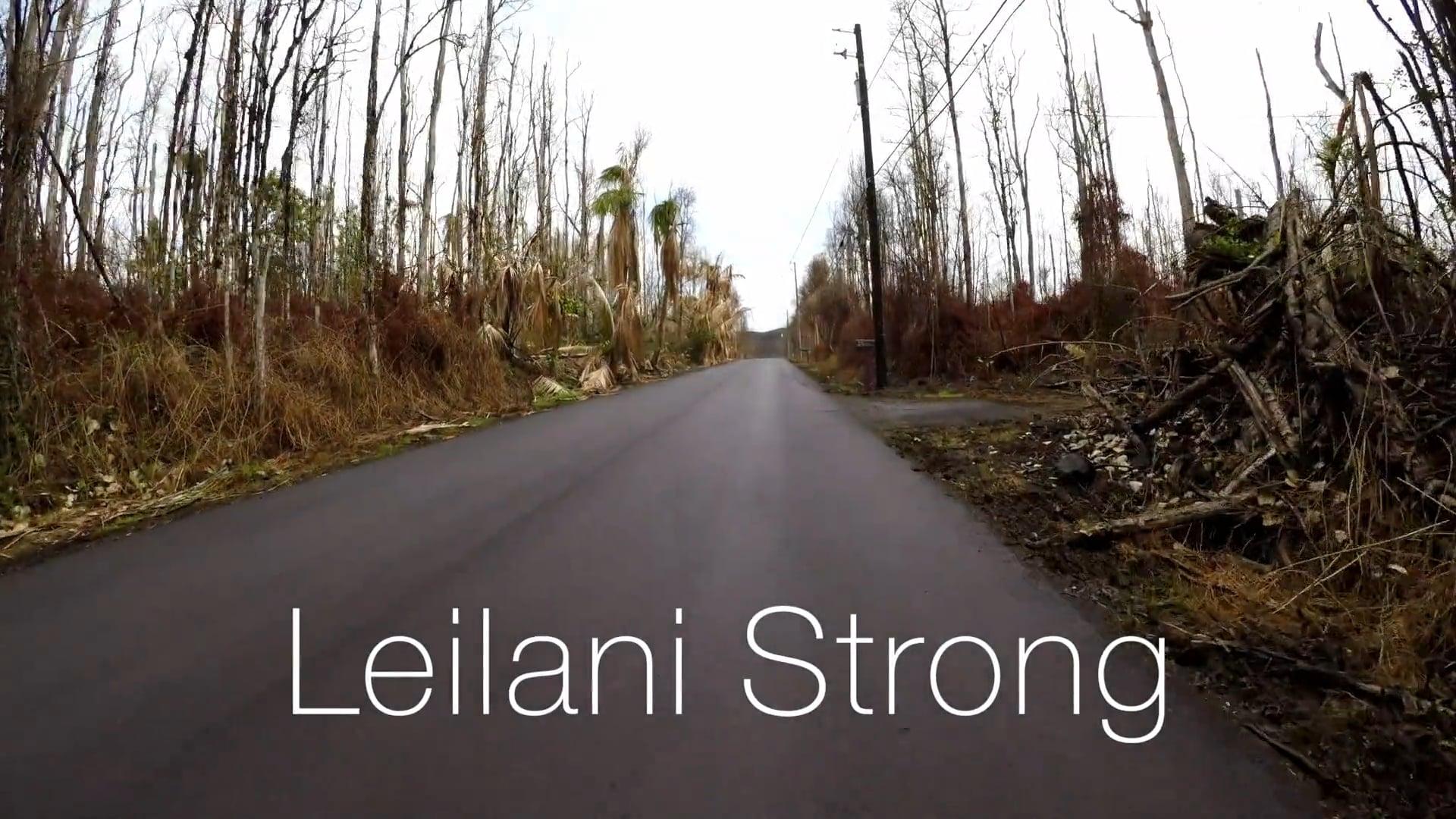 Fissure 8 and Leilani Estates