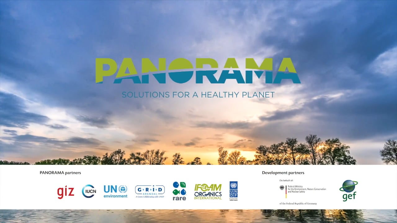 PANORAMA – Solutions for a Healthy Planet: Promoting what works