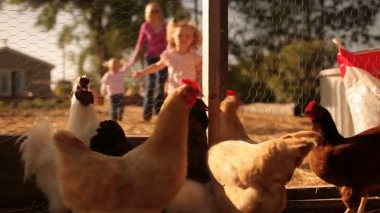 Farm Supply Commercial- Moore Family, SLO