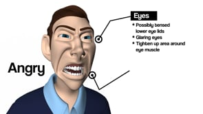 Facial Expression Types in Animation