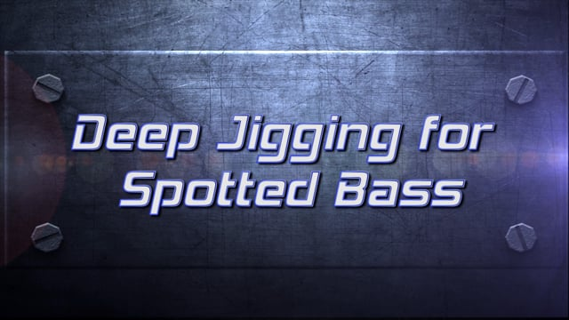 Pro Tips Spotted Bass Spoons FB