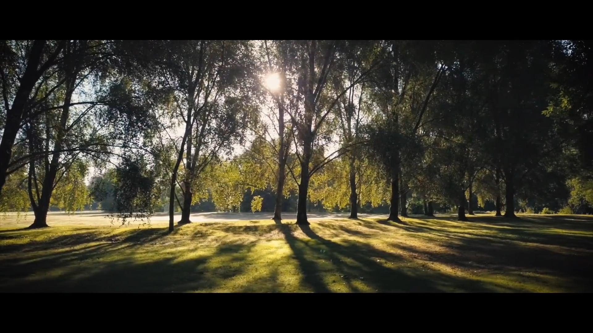 HENNESSY - Jardin d'hiver