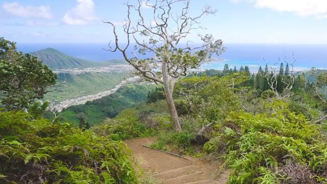 Kuliouou Ridge Trail, Oahu, Hawaii - 4K HDR