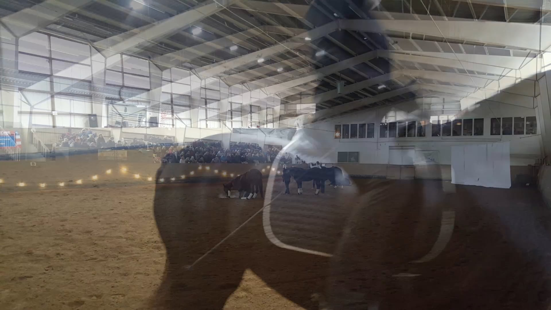 Horsemanship Seminar LET YOUR BODY TALK