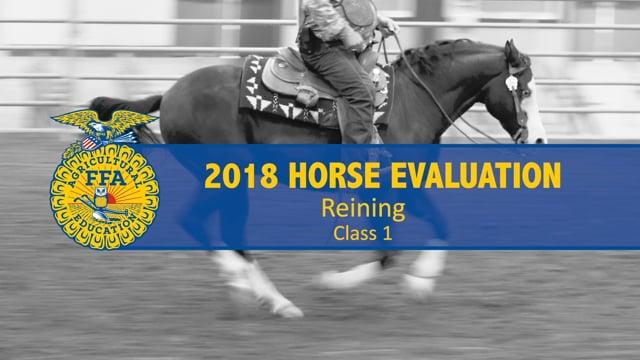 2018 Horse – Class 1 Horse Reining