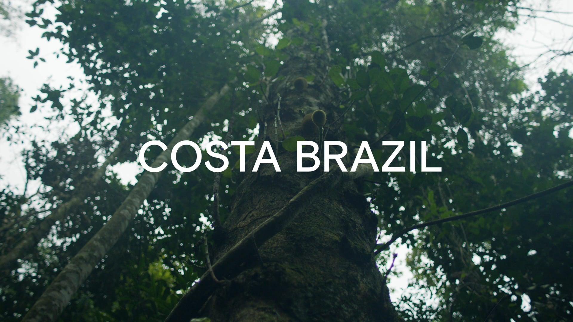 Costa Brazil | Jungle Oil