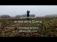 la voix de la Quena - cybernétique