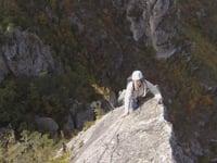 Roche aiguille dans le Tarn