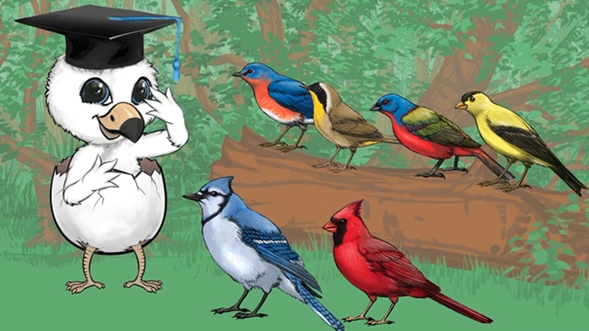 BirdWiser Educational Game