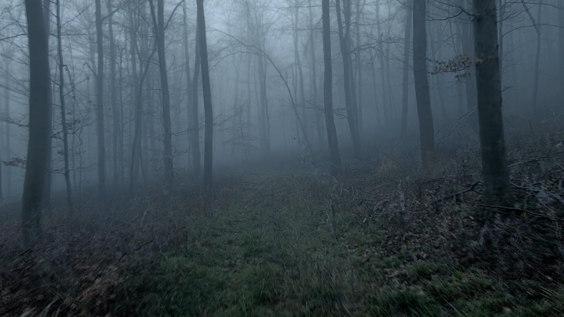 Fagyott május / Frozen may - Trailer