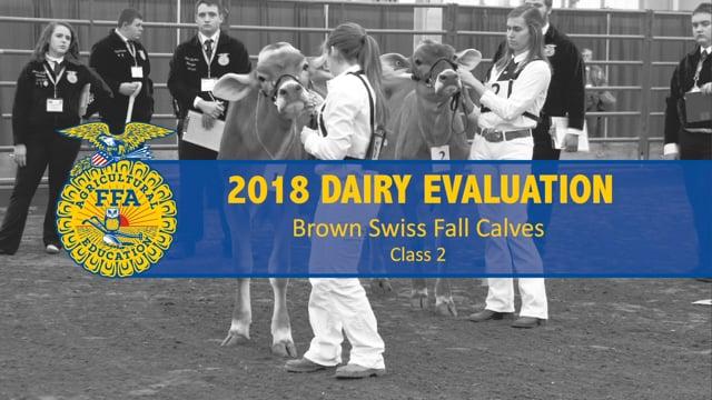 2018 Dairy – Class 2 Brown Swiss Fall Calves