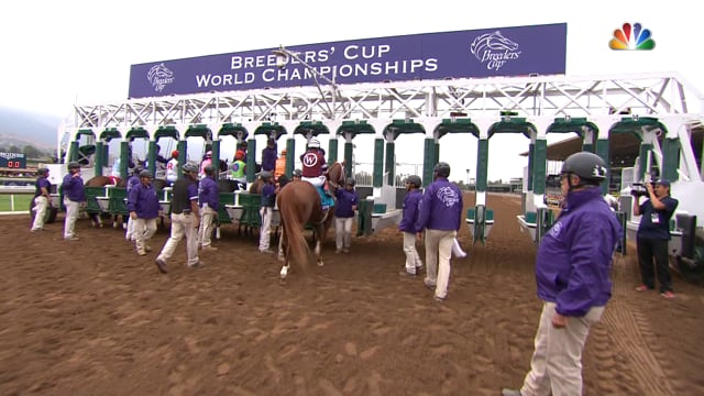 Goldencents | 2014 Breeders' Cup Dirt Mile G1