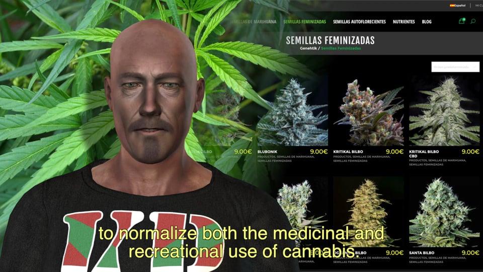 El cannabis en 2019