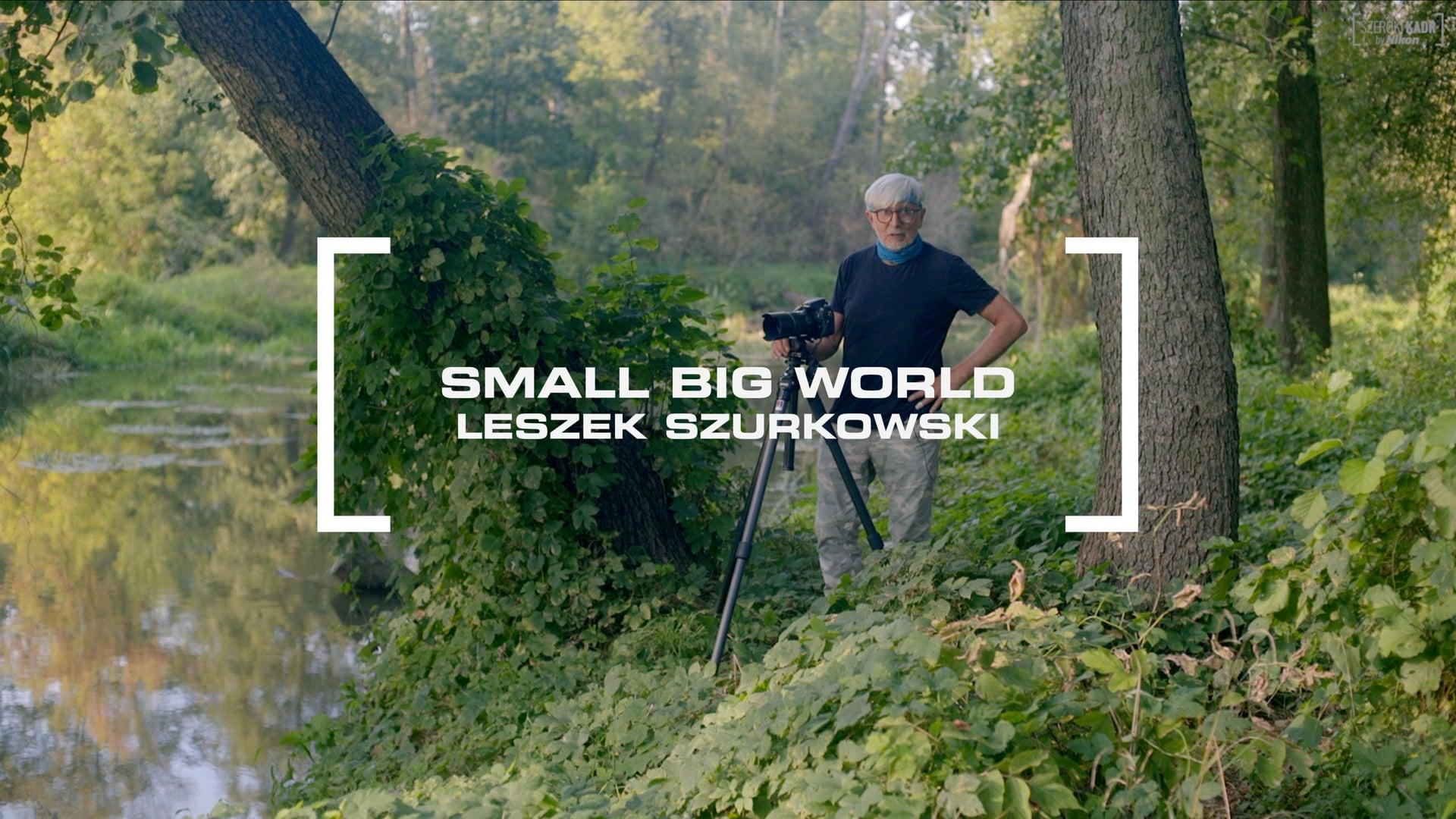 SMALL BIG WORLD