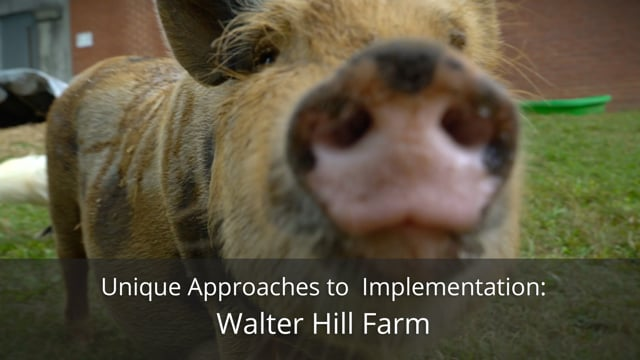 Unique Approaches to Implementation: Walter Hill Farm