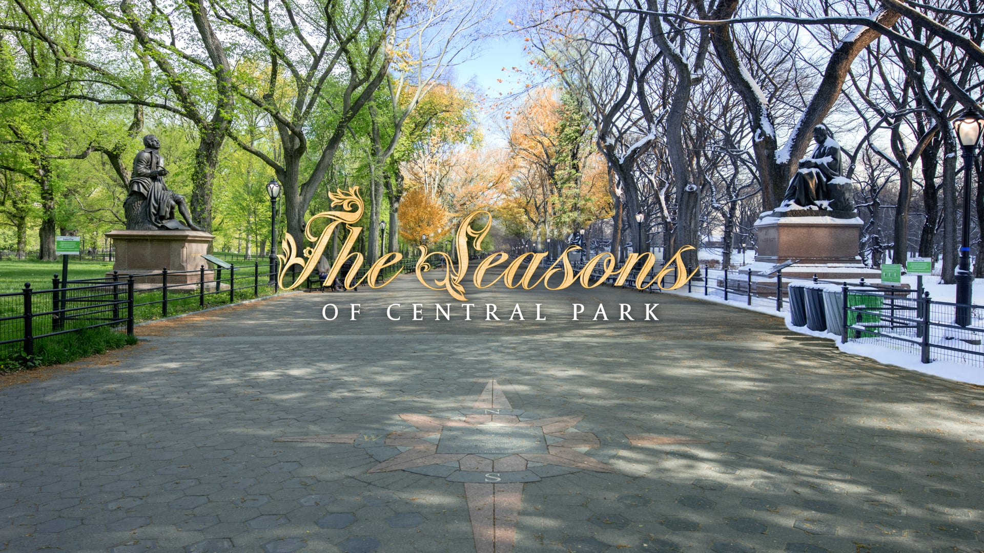 The Seasons of Central Park - 8K