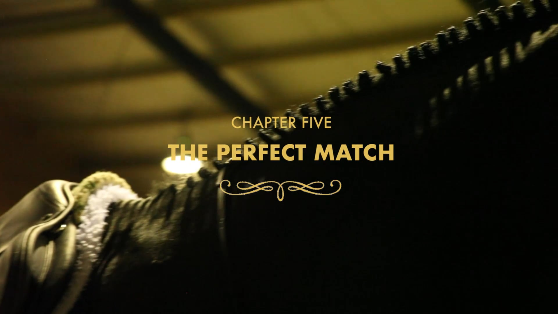 Chapter Five: The Perfect Match