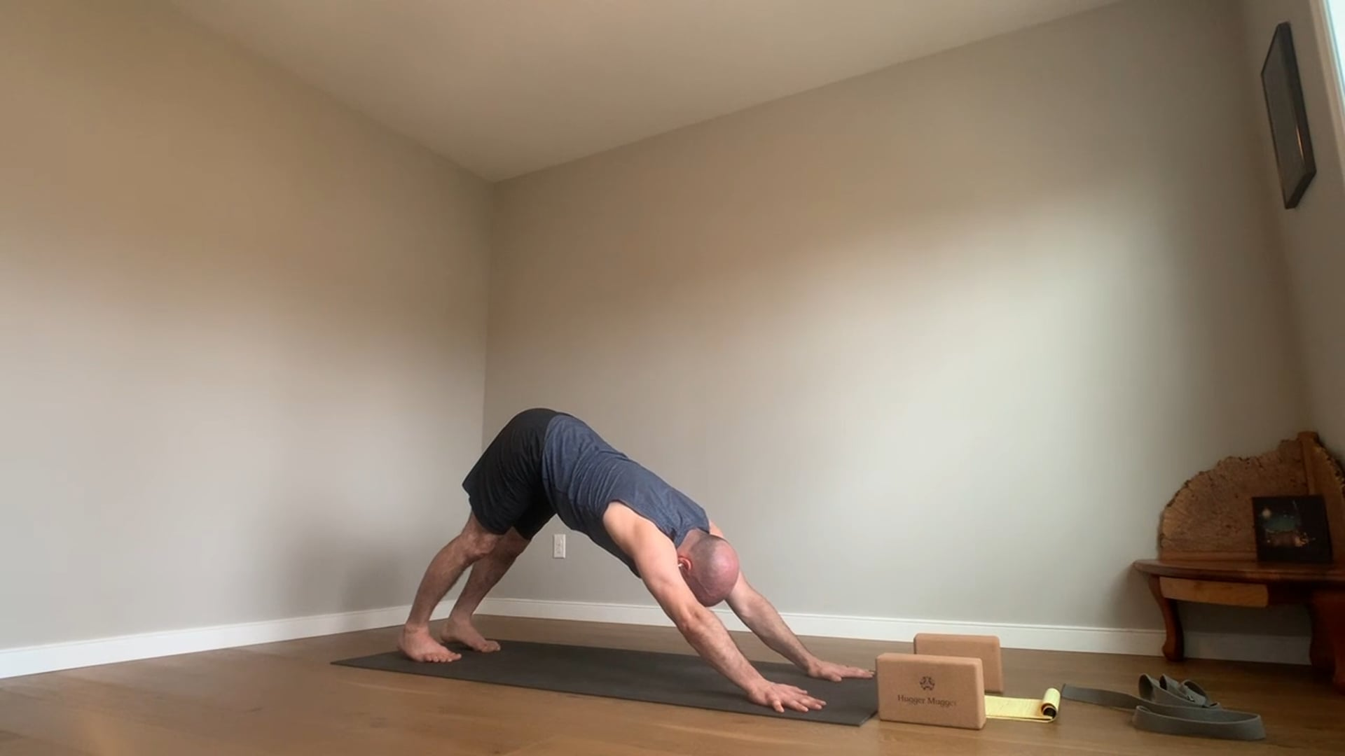 20 min Level 1 Hatha and Slow Flow