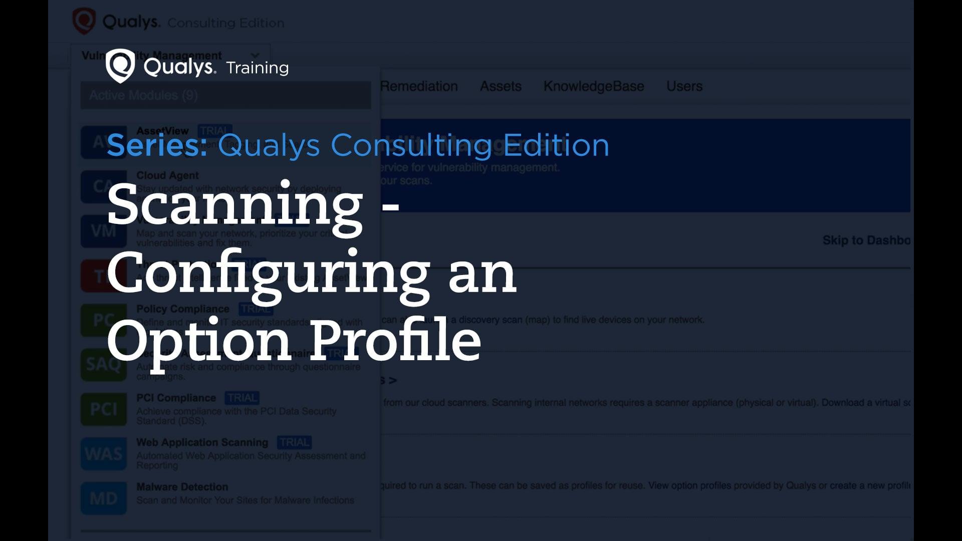 Option Profile - Qualys Consulting Edition