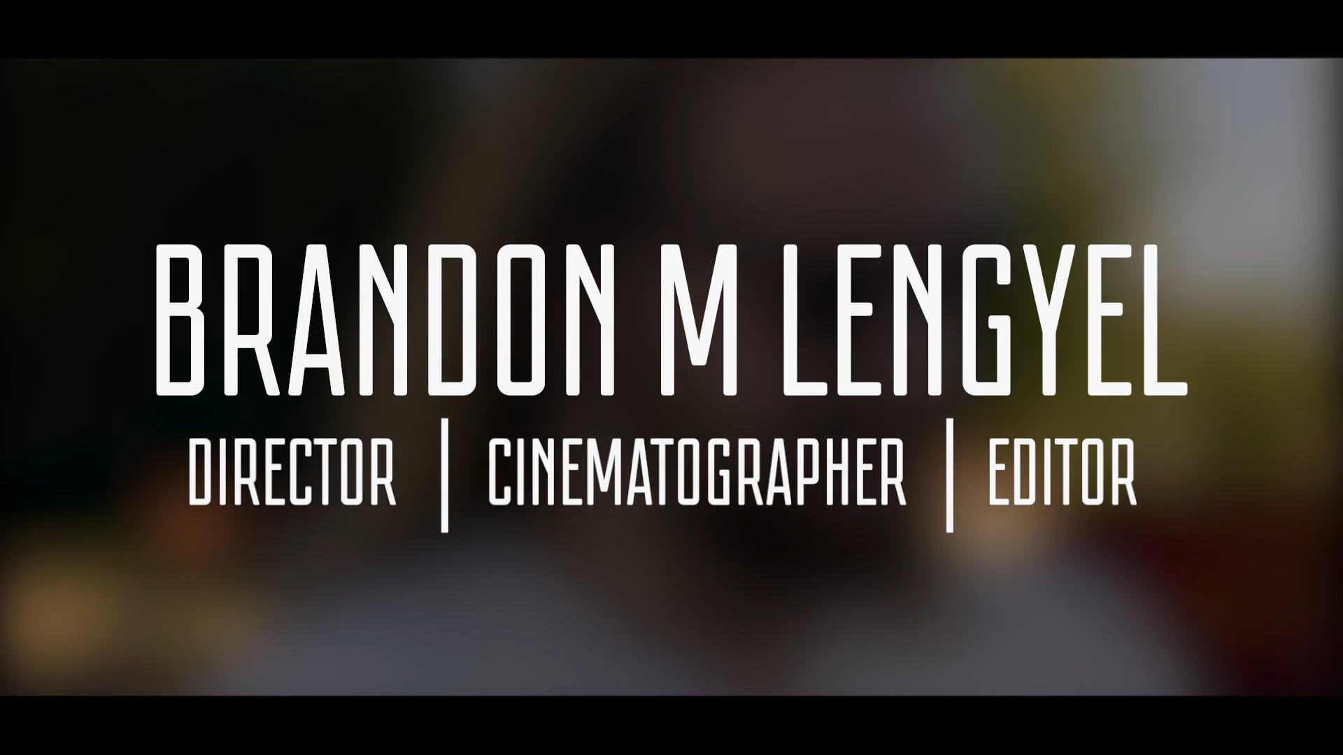 Brandon M Lengyel   Reel 2018