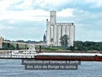 Brazilian Portuguese Subtitling Bunge