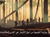 Arabic Subtitling United Nations