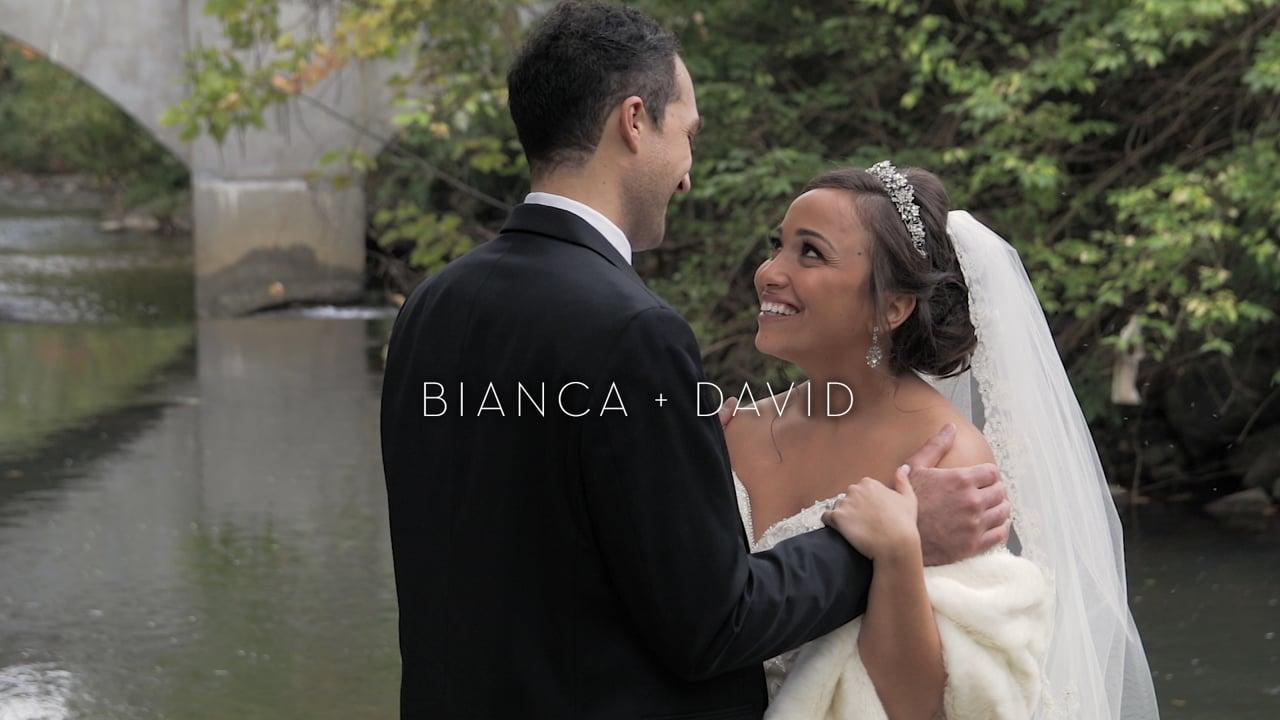 bianca + david | wedding film.