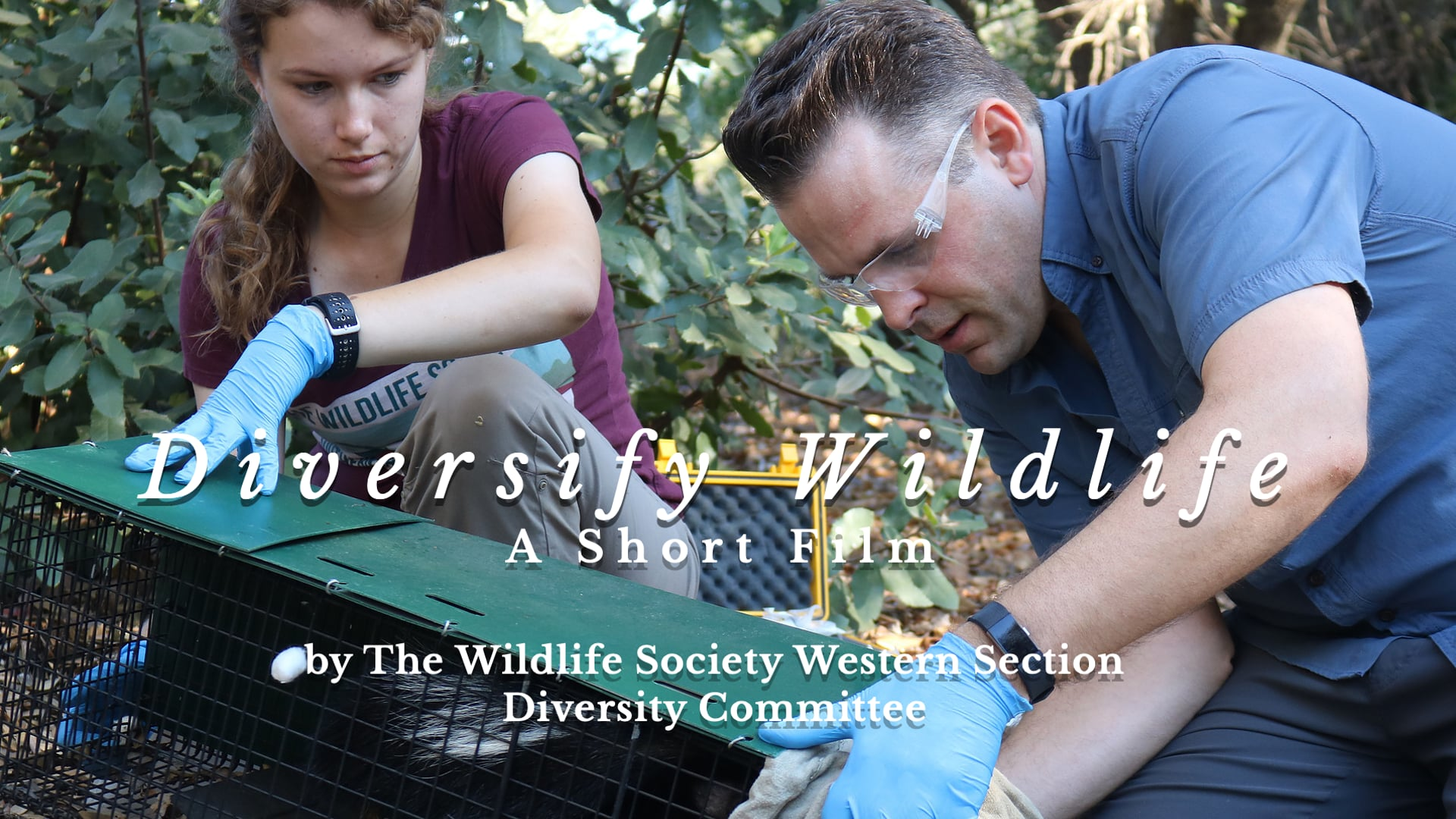 Diversify Wildlife