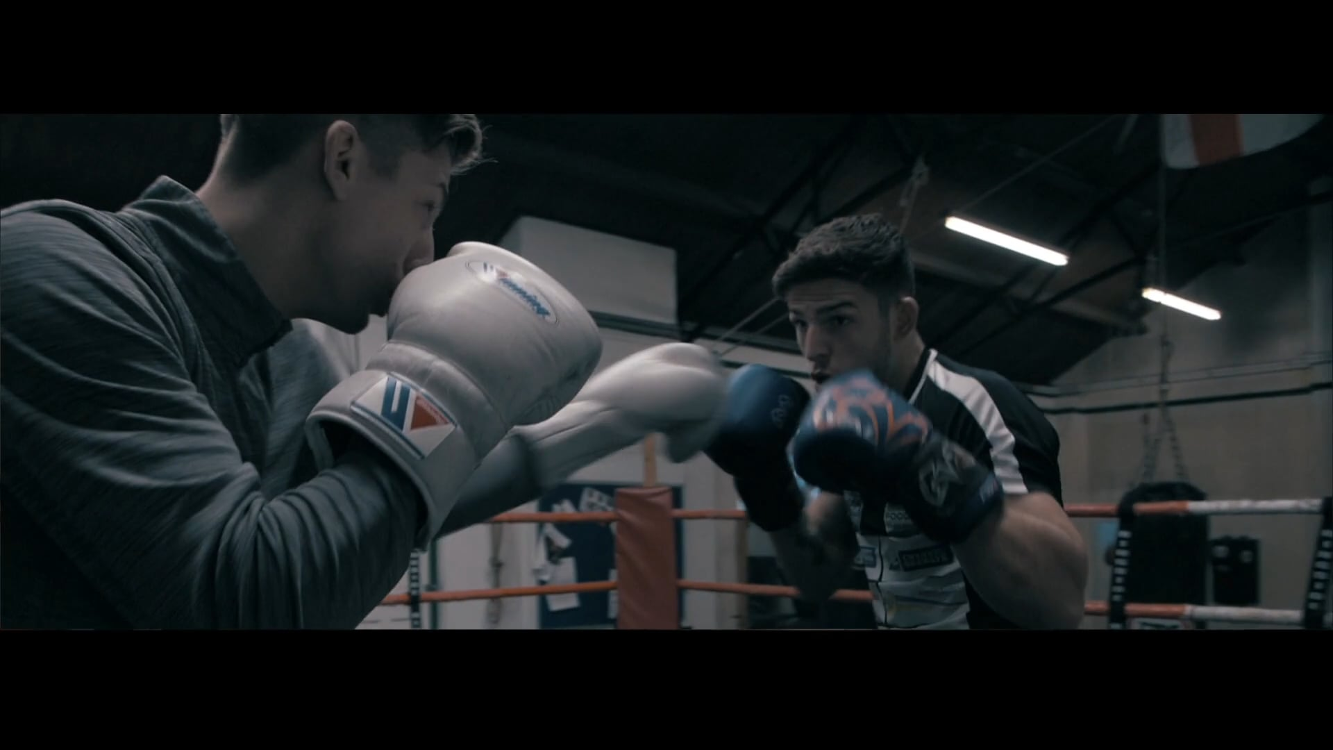 Boxing Brad & Billy
