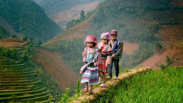 SAMSUNG SUHDTV Vietnam.