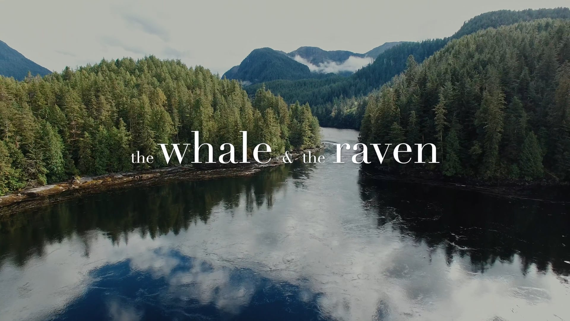 The Whale and the Raven (Trailer)