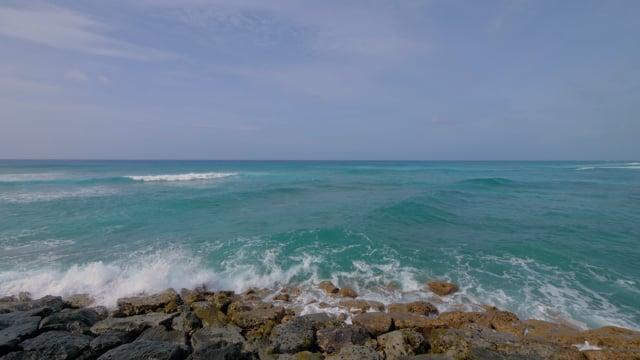 Ala Moana Beach and Waikiki Beach - Oahu Travel Guide