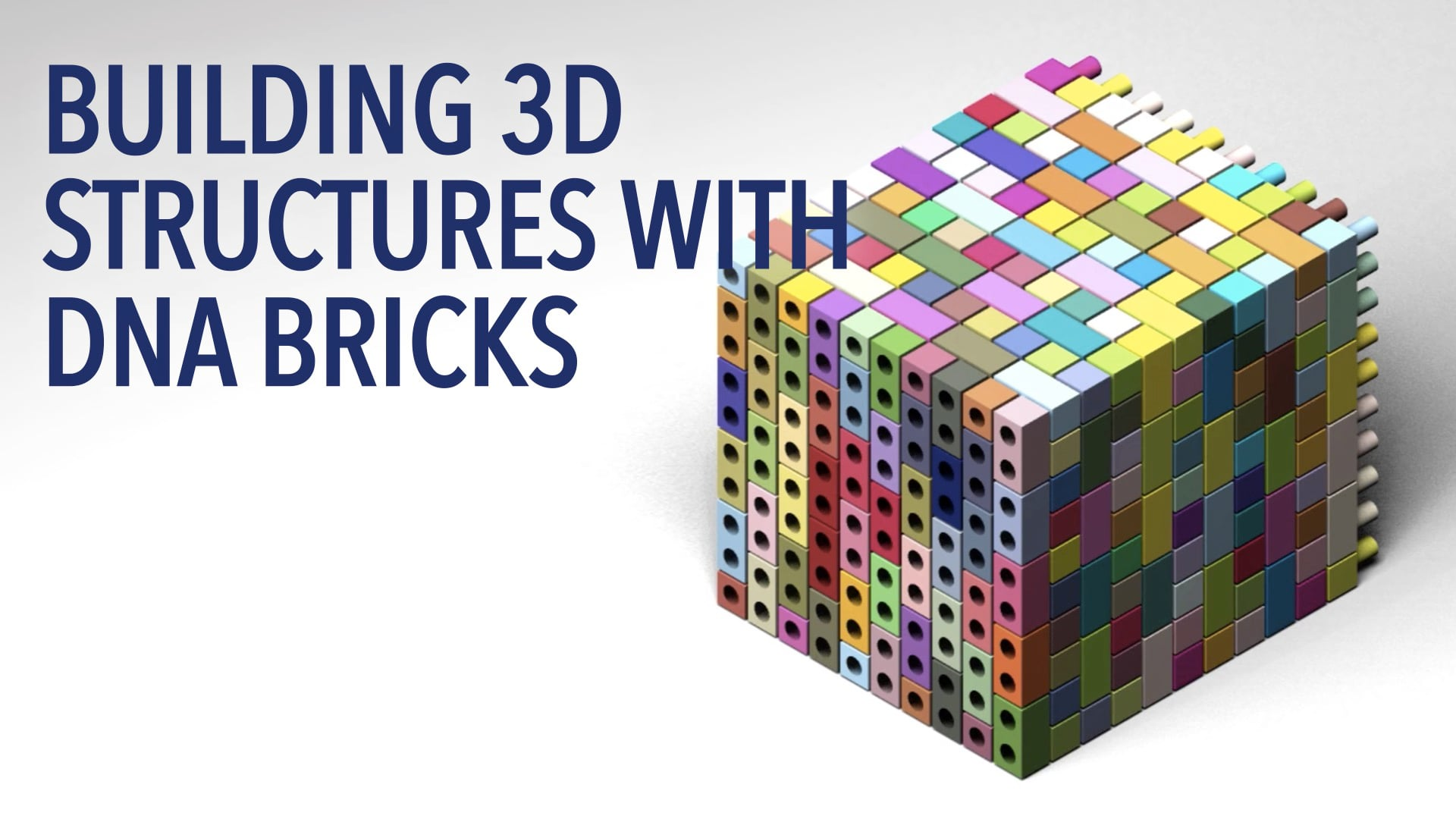 Building 3D Structures with DNA Bricks